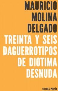 Cubierta TREINTA Y SEIS DAGUERROTIPOS DE DIOTIMA DESNUDA